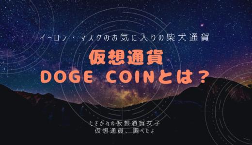 【仮想通貨Dogecoin】イーロン・マスクのお気入りDogecoin(ドージコイン)とは?